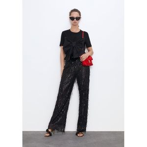 ZARA Fringe Sequin Pants